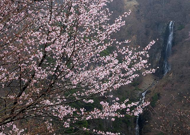 辰野清と行く奥志賀撮影の旅